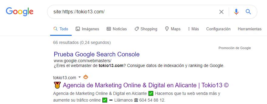 comprobar si una web está indexada